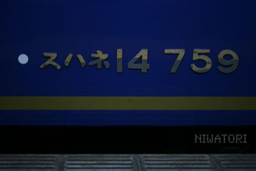 IMG_3774.jpg